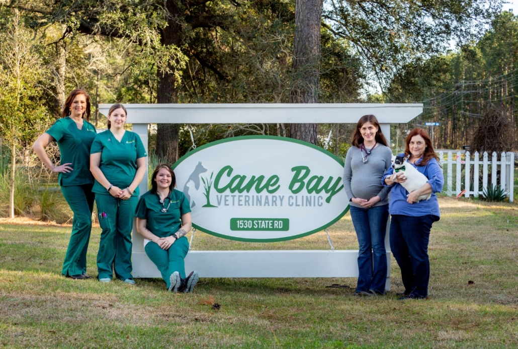 Cane Bay Veterinary Clinic